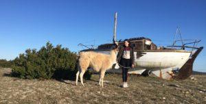 rando avec les ânes la vacquerie